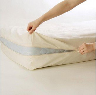 Organic Cotton Pillows & Natural Bedding