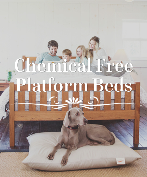 Free Shipping Chemical Free Bed Sets