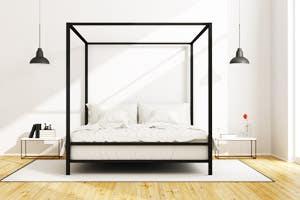 Canopy Platform Bed Frame