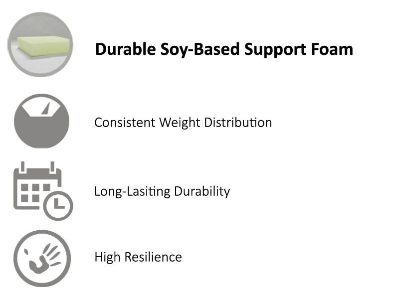 Soy based support foam