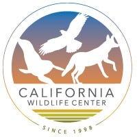 california wildlife