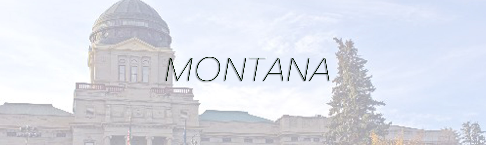 Shipping Futons, Sofa Beds, and Other Futon Shop products to Montana