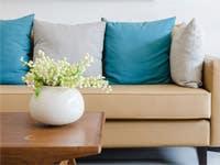 Organic Cotton Pillows