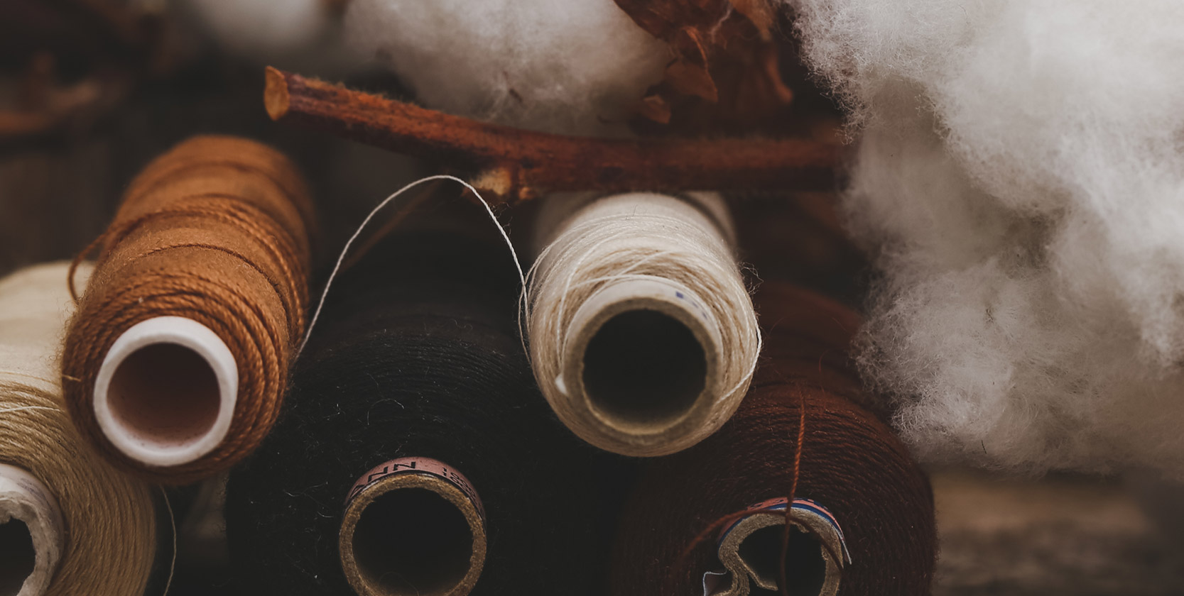 What Is Organic Cotton?