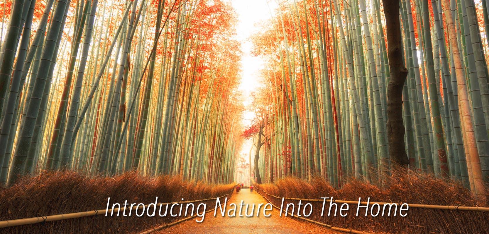 Introducing_Nature_Into_The_Home_shikifuton_mattress
