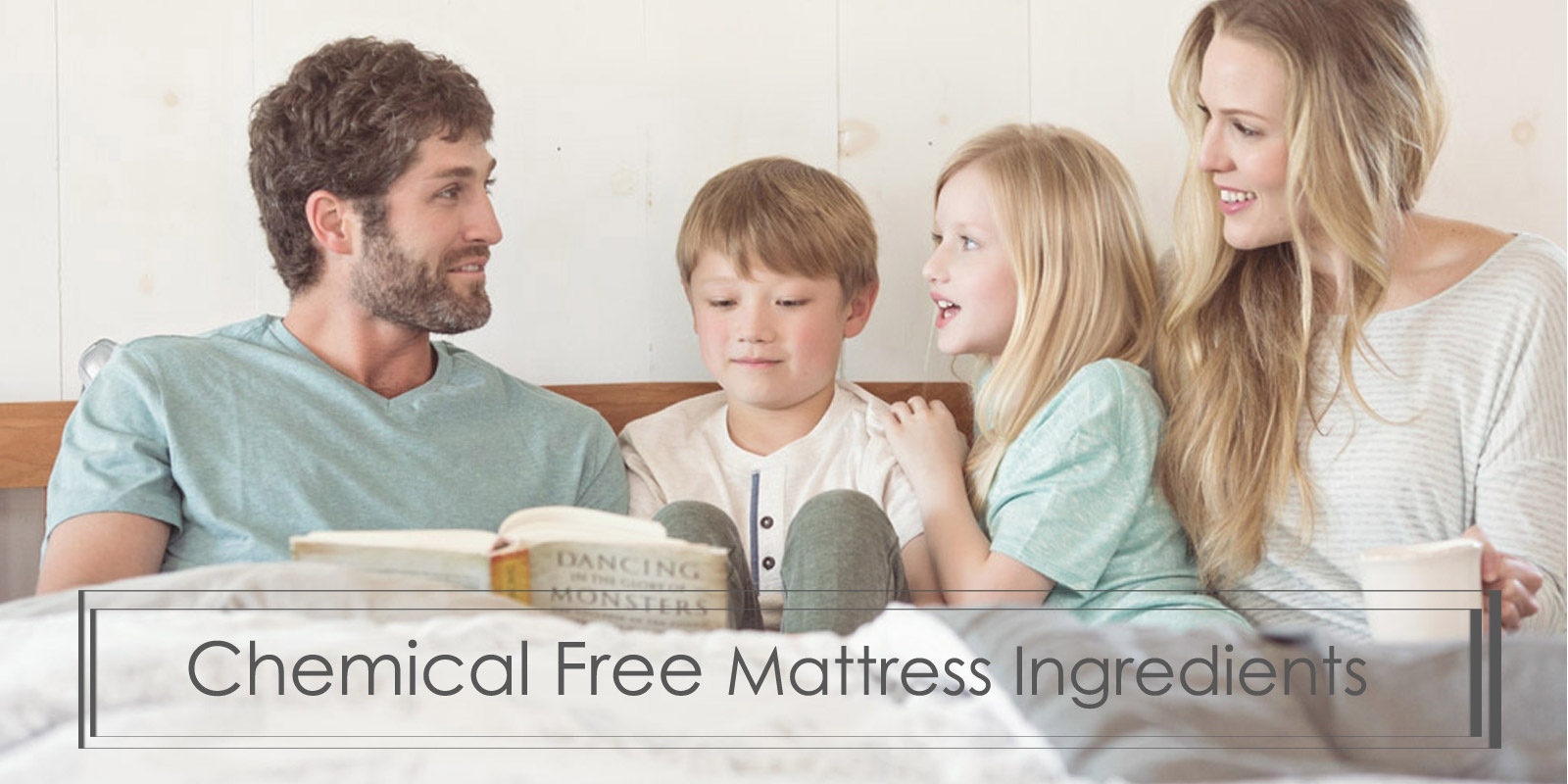 What are the ingredients of Chemical Free Mattresses