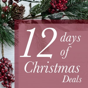 12 Days before Christmas sale