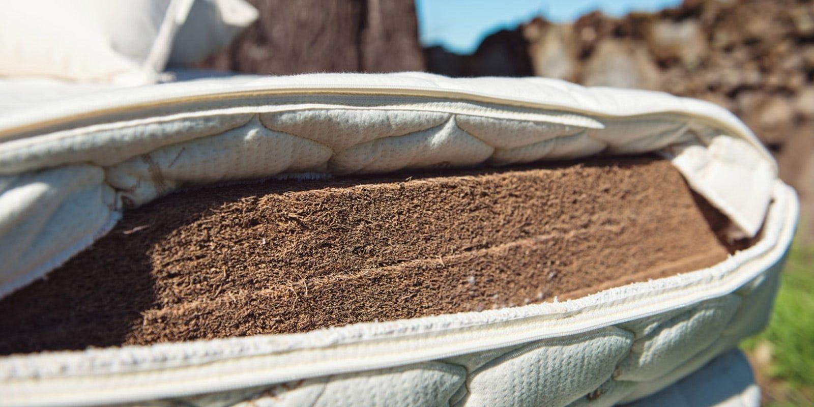 Organic Coconut Mattresses