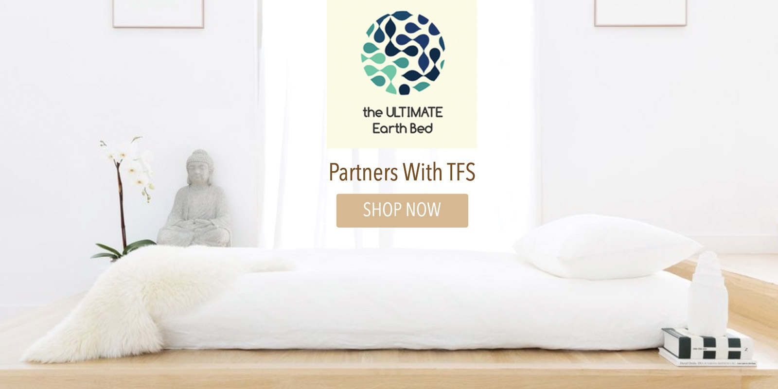 Ultimate Earth Partners with The Futon Shop