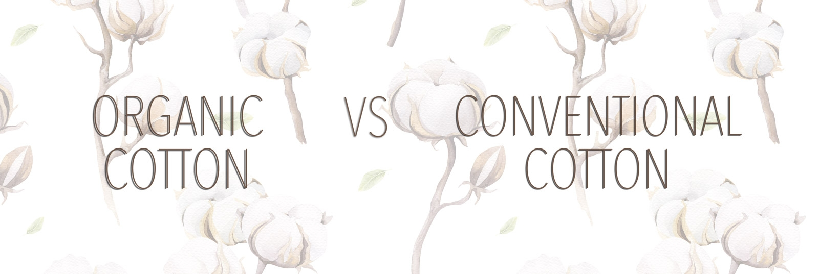 Organic Cotton Better than Conventional Cotton