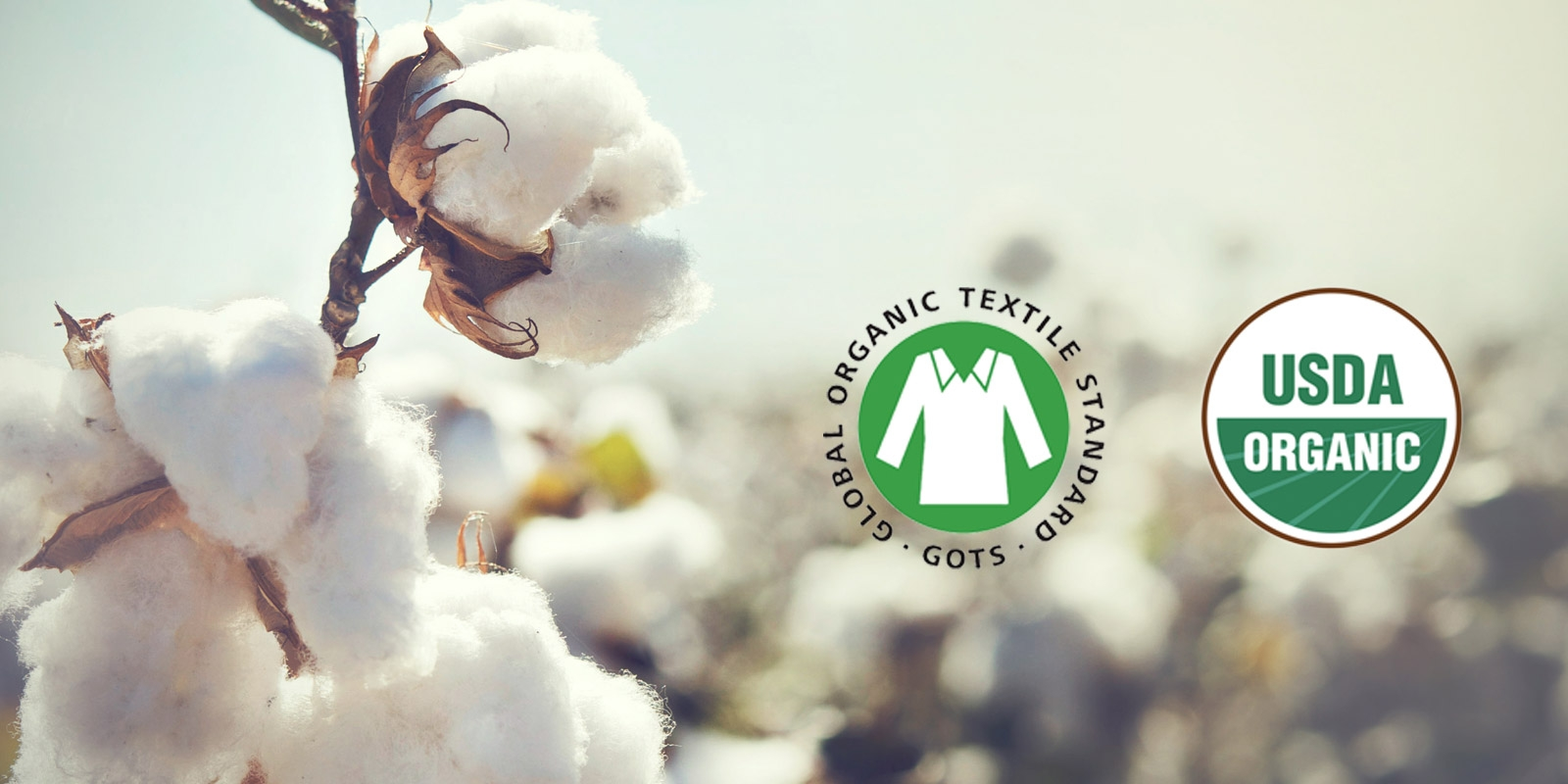 USDA Certified Organic Cotton vs GOTS Certified Organic Cotton