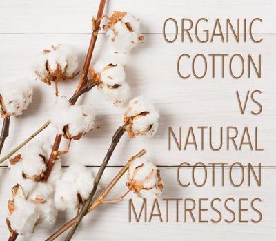 Organic Cotton Verses Natural Cotton Mattresses
