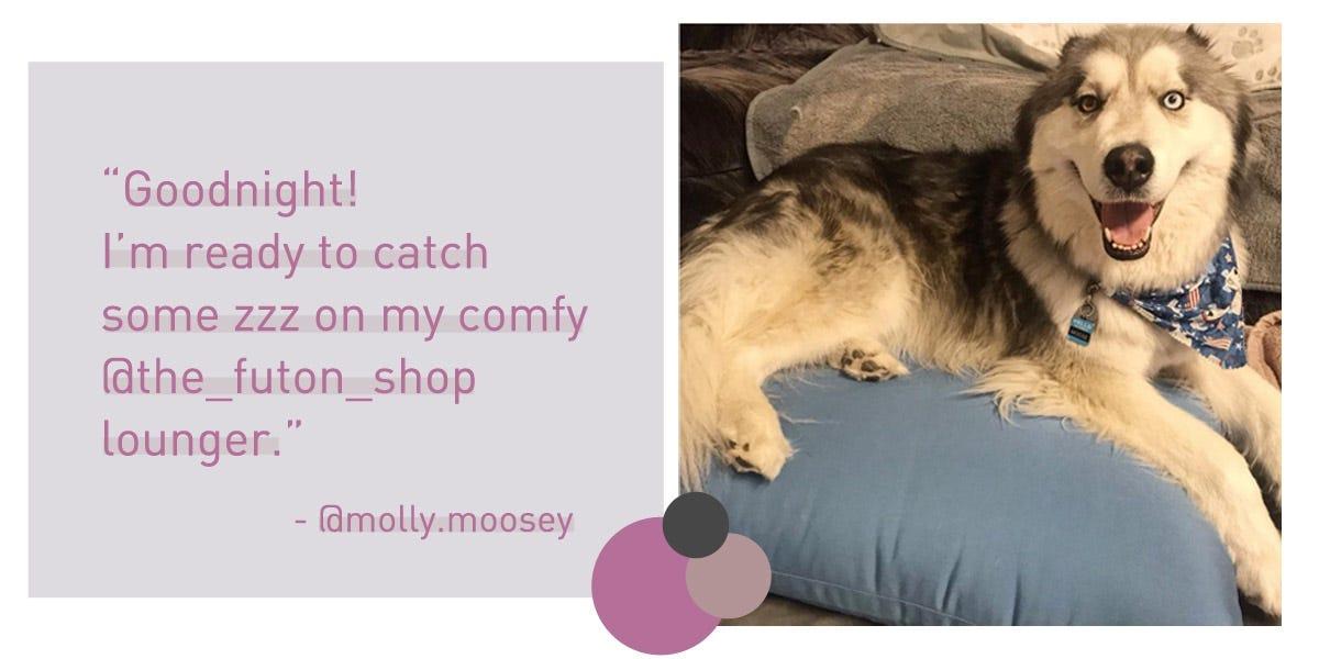 Sleeping on a Wool Mattress