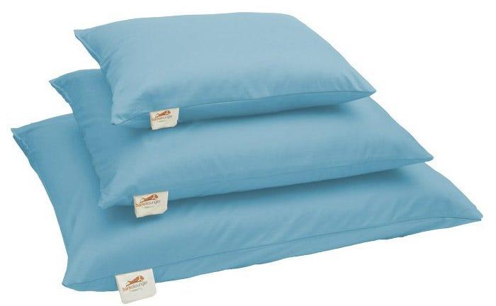 Natural Pet mattresses