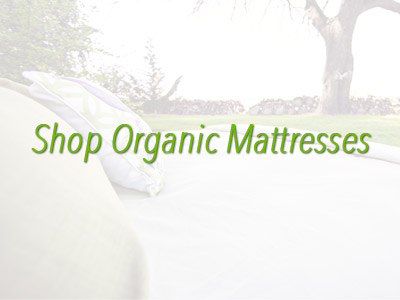 Shop Organic Mattresses