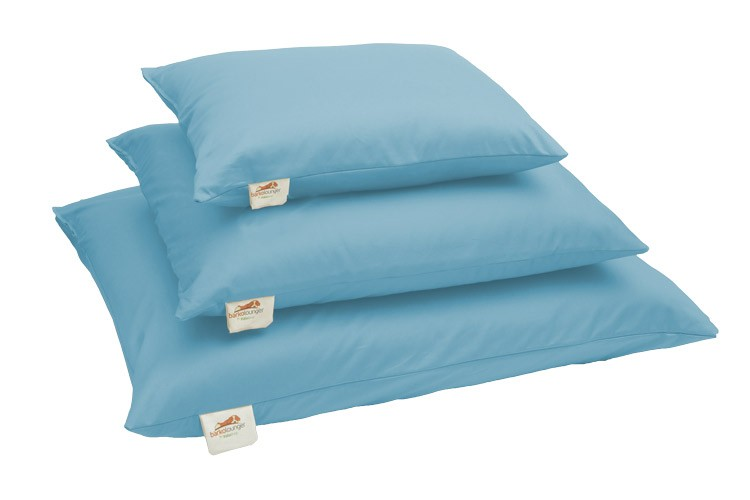 Natural Pet Mattresses Light Blue