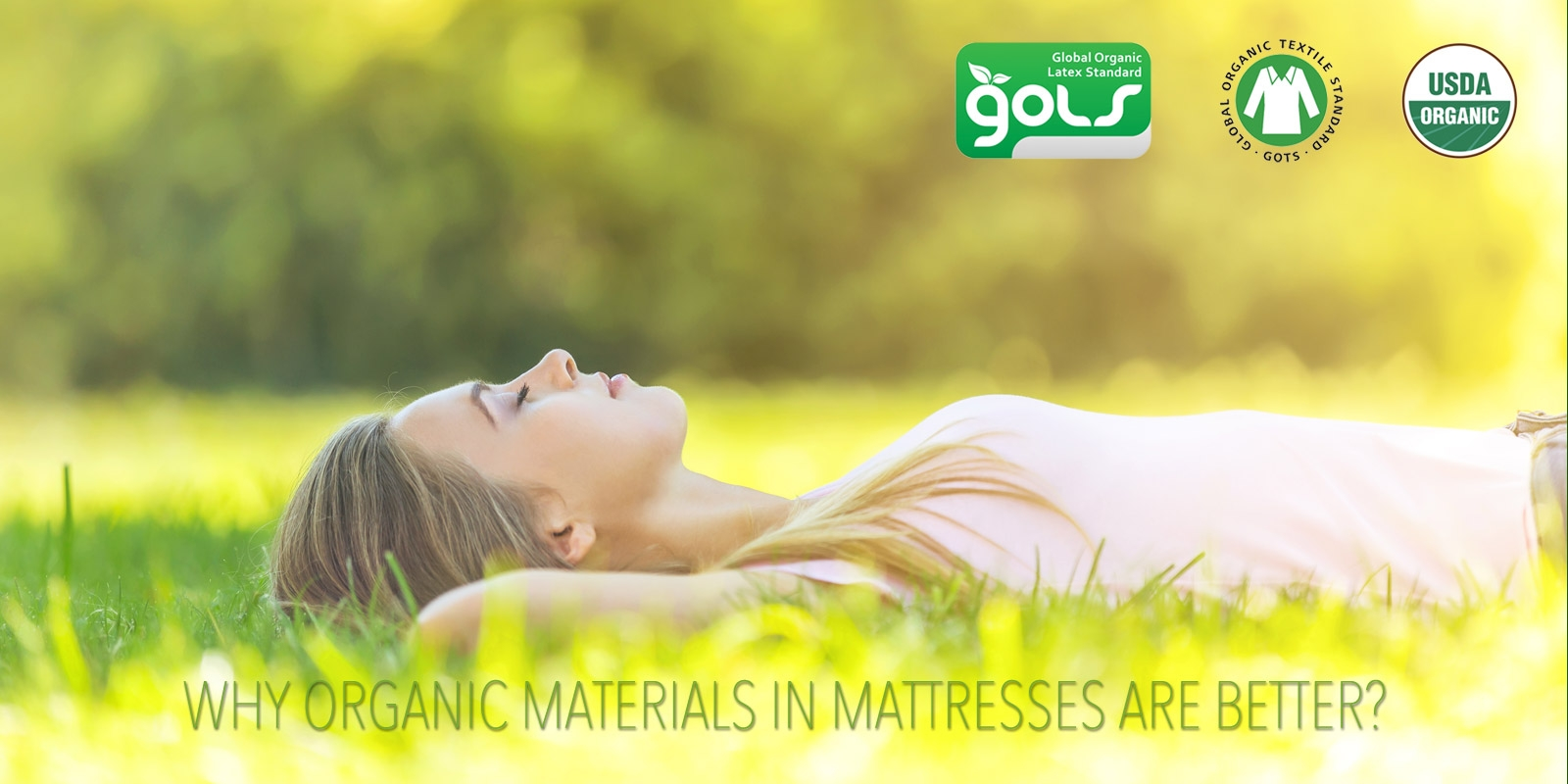 Why Organic Cotton Mattresses are Better