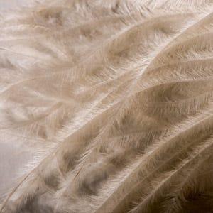 Avian fiber