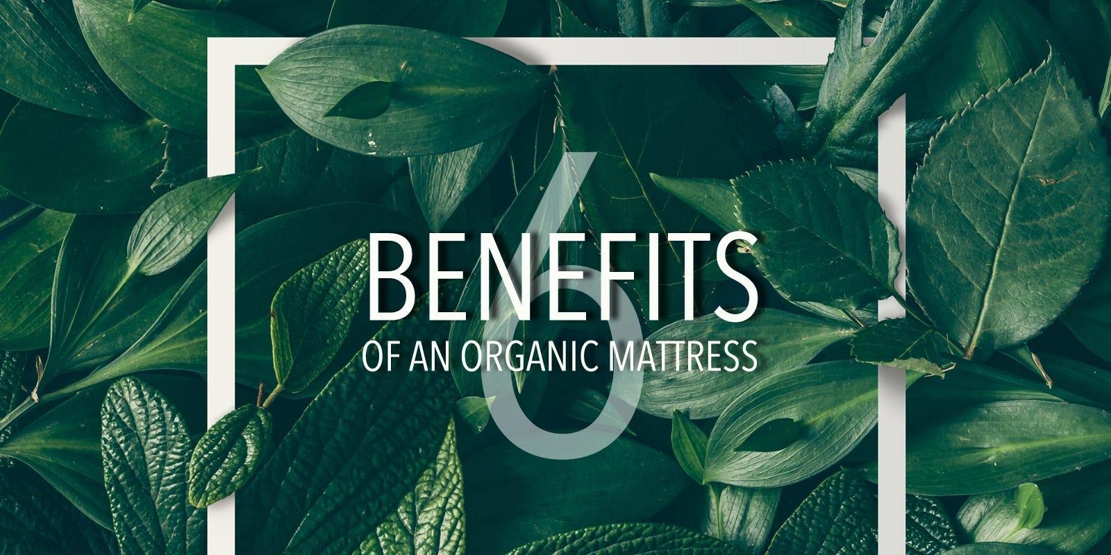 Why You Should Buy An Organic Mattress