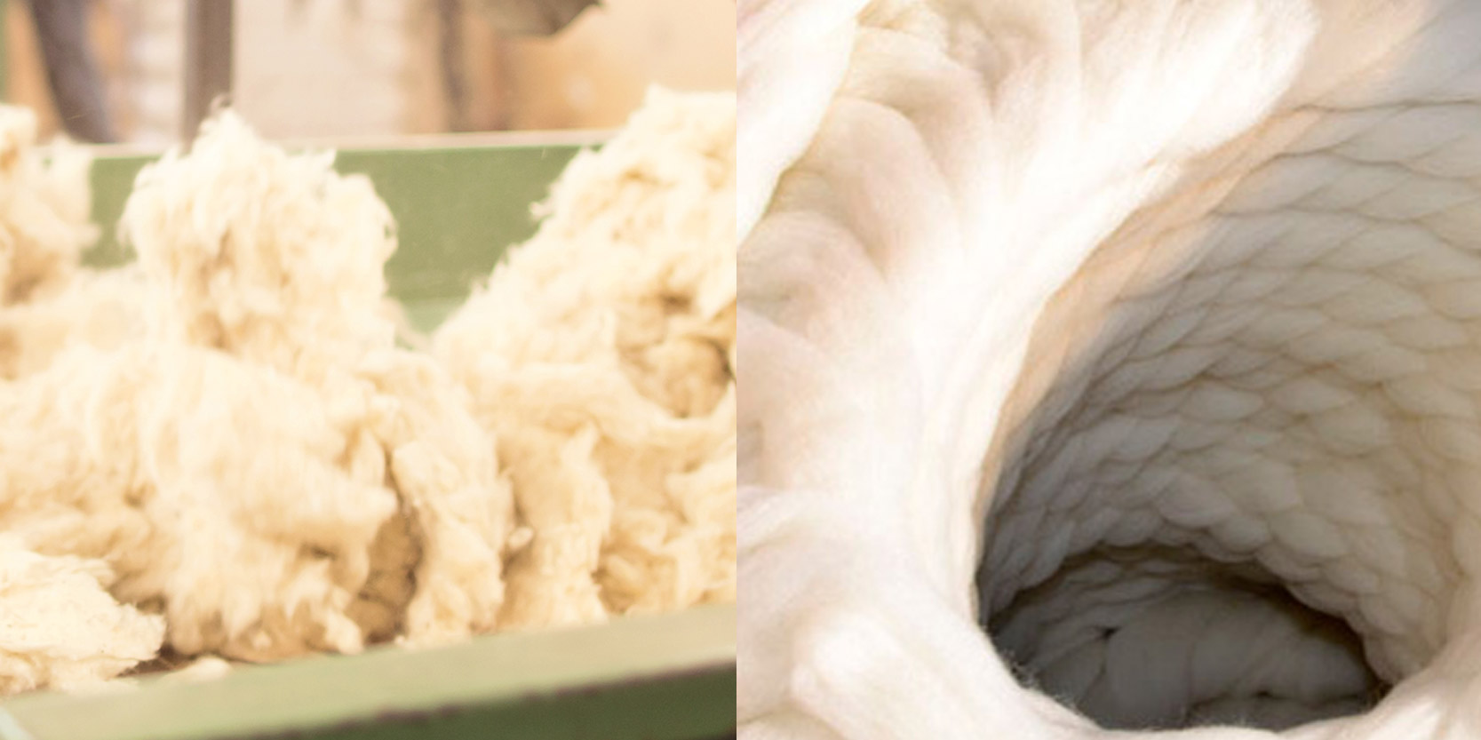 Organic Wool Tops and Noils