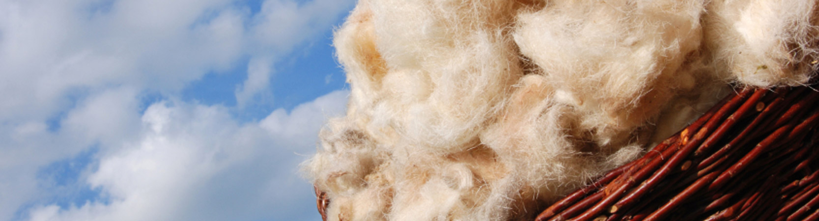 wool mattresses