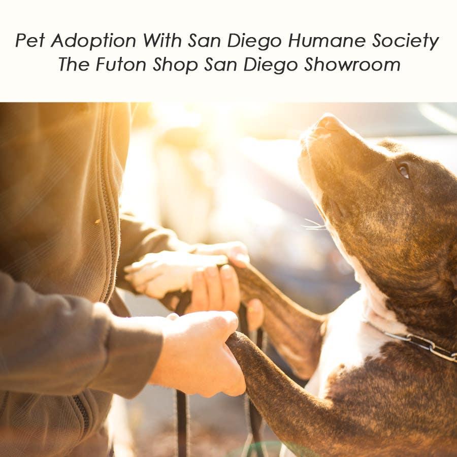 The Futon Shop San Diego