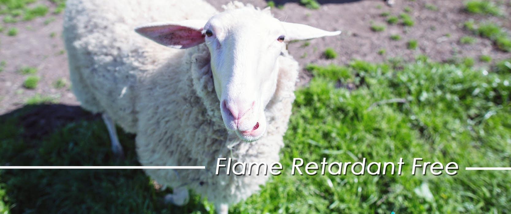 flame retardant free