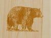 bear insert